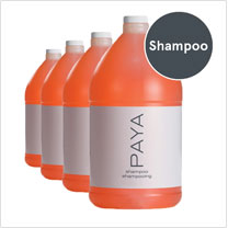 PAYA Shampoo (Case of 4 gallons)
